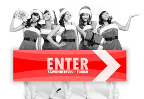 Christmas Site for Sgwonderfuls